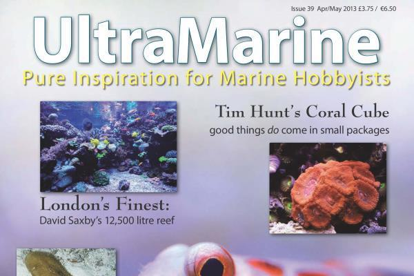 UltraMarine Magazine Issue 39 Cover Shot