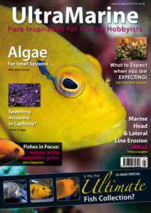 Issue 45 Front Cover