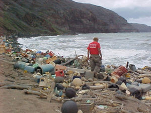 Marine debris on Hawaiian coast. Source: NOAA