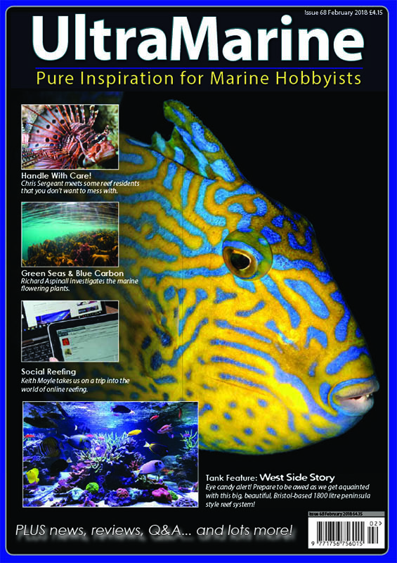 UltraMarine Magazine Issue 68