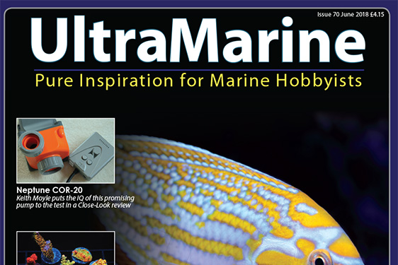 UltraMarine Magazine Issue 70
