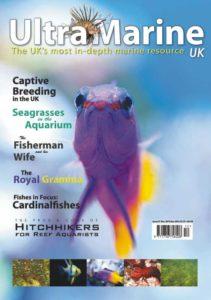 UltraMarine Magazine Issue 31