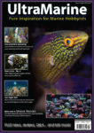 UltraMarine Magazine Issue 75