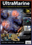 UltraMarine Magazine Issue 79
